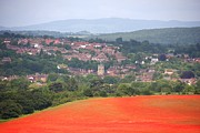 Poppy Gifts Metal Prints - Bewdley on poppy Metal Print by Ed Lukas