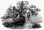 Bewick Photos - Bewick: Hanged Man by Granger