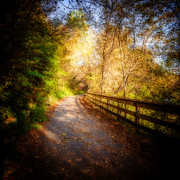 Autumn. Fall Colors - Beyond the Bend by Anthony Rego