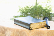 Special Occasion Photos - Bible and Microphone on Table by Ned Frisk