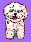 Nadi Spencer Painting Metal Prints - Bichon Frise Metal Print by Nadi Spencer