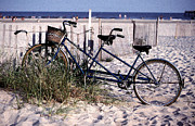 Tandem Bicycle Prints - Bicycle Built for Two on a Beach Print by Ercole Gaudioso