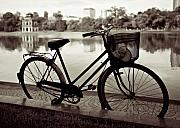 B W Photos - Bicycle by the Lake by David Bowman