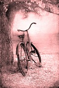 Old Tree Framed Prints - Bicycle in Pink Framed Print by Sophie Vigneault