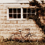 Rustic Art Prints - Bicycle Print by Julie Hamilton