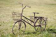 Bicycle Lawn Ornament Print by Jaak Nilson