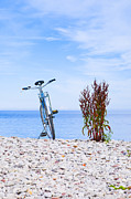 Take A View Posters - Bicycle on the beach on Gotland Sweden Poster by Kathleen Smith