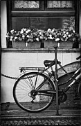 Silvia Ganora Metal Prints - Bicycle with flowers Metal Print by Silvia Ganora