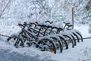 Blizzard Framed Prints - Bicycles In The Snow Framed Print by Heidi Smith
