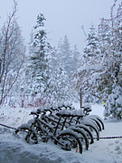 Repetition Framed Prints - Bicycles In The Snow II Framed Print by Heidi Smith