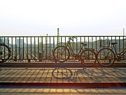 Bicycle Basket Prints - Bicycles Leaning On Fence Print by Janusz Ziob