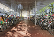 Bicycle Photos - Bicycles Under a Shelter by Andersen Ross