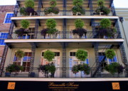 Hanging Baskets Framed Prints - Bienville Framed Print by Carol Groenen