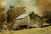 Barn Yard Photo Prints - Big Barn Little Barn Print by Kathy Jennings