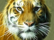 Mamma Metal Prints - Big Cat Big Stripes Metal Print by Tilly Williams