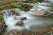 Beautiful Creek Prints - Big Creek Smoky Mountains Print by Dean Pennala