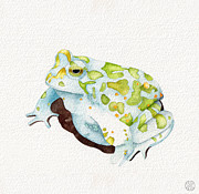 Kristin Maija Peterson - Big Green Toad