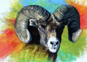 Sheep Series Originals - Big Horned Sheep by Janice Lawrence