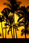 Generic Photos - Big Island, View by Greg Vaughn - Printscapes