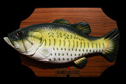 Large-mouth Bass Framed Prints - Big Mouth Billy Bass . 7D13533 Framed Print by Wingsdomain Art and Photography