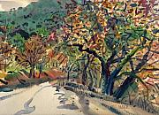 Niles Prints - Big Oak in Niles Canyon Print by Donald Maier
