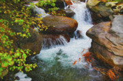 Mono Mixed Media Prints - Big Pine Creek Print by Eastern Sierra Gallery