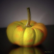 Canvas Pressure Prints - Big Pumpkin Print by Bruno Santoro