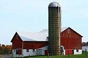 Amish Farms Photos - Big Red Barn by Rick Buzalewski
