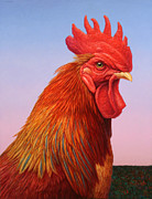 Birds Painting Posters - Big Red Rooster Poster by James W Johnson