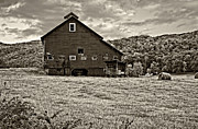 Hay Bale Framed Prints - Big Red sepia Framed Print by Steve Harrington