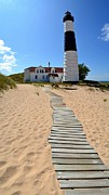 Trees Light Windows Prints - Big Sable Lighthouse at Ludington State Park Print by Michelle Calkins