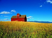 Samsung Tl320 Framed Prints - Big Sky-Red Barn Framed Print by Glenn Barclay