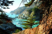 Big Sur Vista Print by Charlene Mitchell