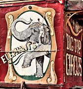 Big Top Framed Prints - Big Top Elephants Framed Print by Kristin Elmquist
