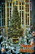 Chris Lord - Big Tree at The Rock