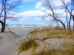 Trees Photos - Big Waves on Lake Michigan by Michelle Calkins