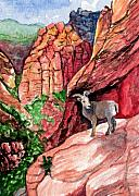 Red Rock Canyon Paintings - Bighorn by Bonnie Kelso