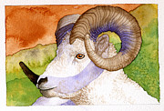 Shadows Paintings - Bighorn by Eunice Olson
