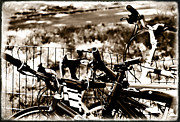 Sport Bar Framed Prints - Bike Against The Fence Framed Print by Madeline Ellis