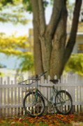 Picket Fence Prints - Bike by Tree in Autumn Print by Jill Battaglia