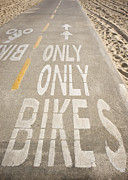 Bicycling Photos - Bike Lane by Sam Bloomberg-rissman