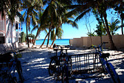 Florida House Posters - Bikes at Dogs Beach in Key West Poster by Susanne Van Hulst