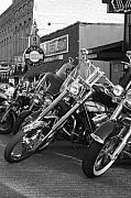 Dawn Davis - Bikes on Beale