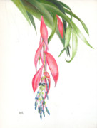 Epiphyte Painting Prints - Billbergia Windii Print by Penrith Goff