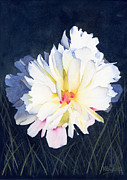 Carnation Painting Metal Prints - Billowy Metal Print by Ken Powers