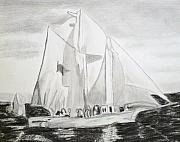 Sails Drawings - Biloxi Schooner by Cathy Jourdan
