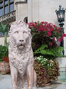 House Lion Prints - Biltmore House Lion Print by Randy Edwards