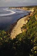 Beach Scenes Photos - Bingin Beach And Ocean From The Cliffs by Justin Guariglia