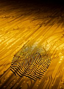 Printed Photo Prints - Biometric Security, Artwork Print by Victor Habbick Visions