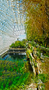 Biosphere2 - Environment 1 Print by Gregory Dyer